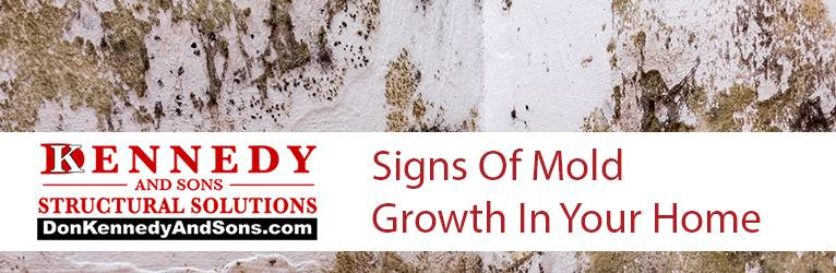 Signs Of Mold Growth In Your Home
